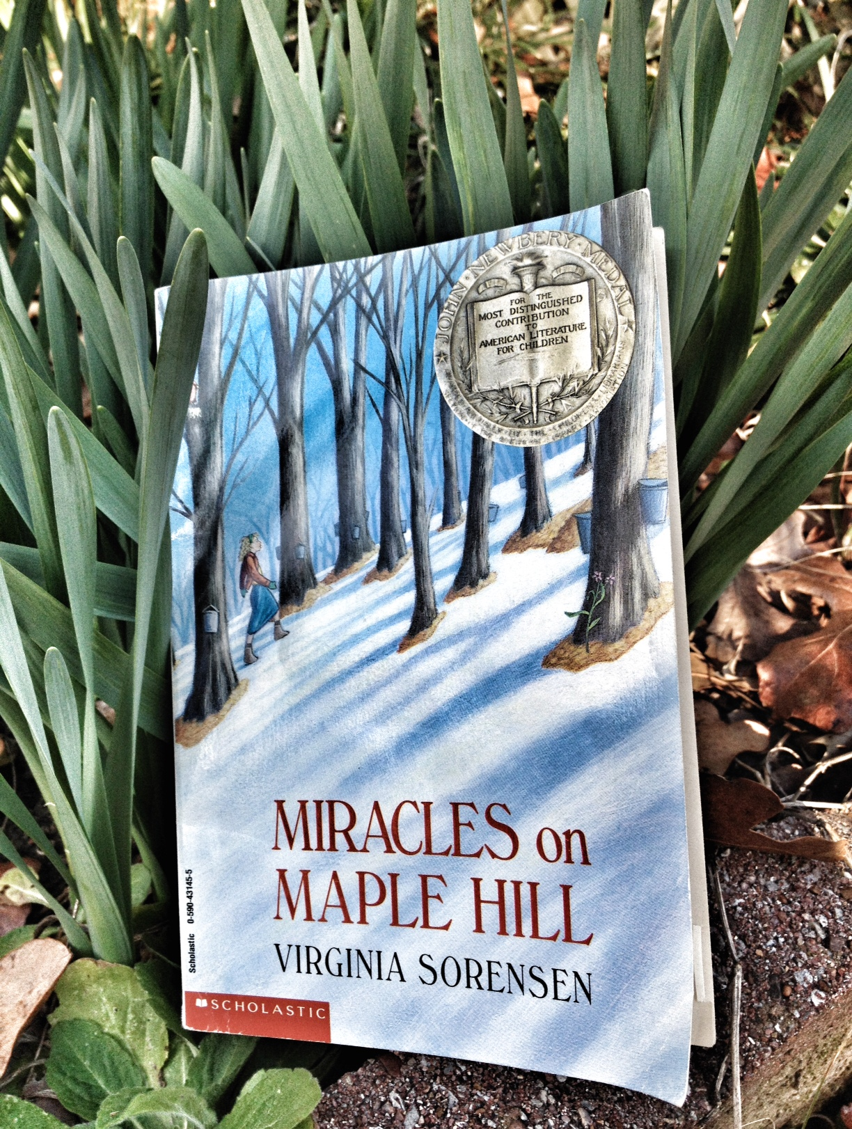 Miracles on Maple Hill, Great Read Alouds, Novels for Children, Newberry Winners